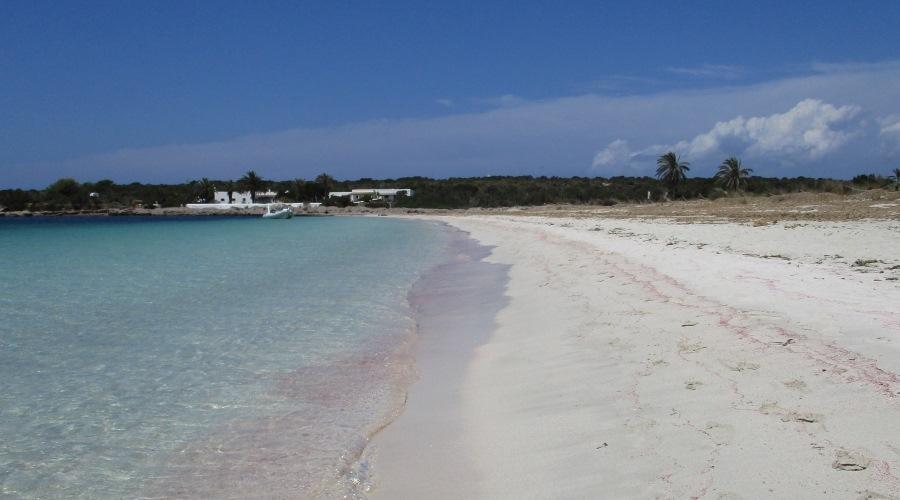 espalmador 8 spiaggia
